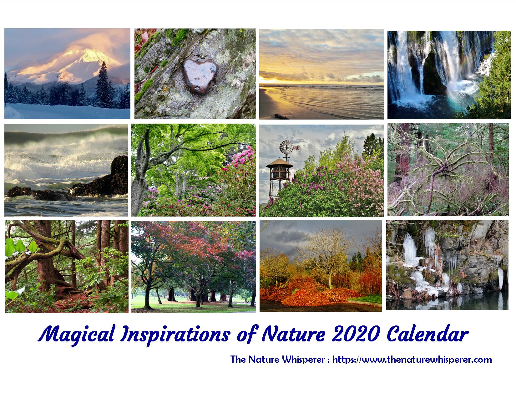 Miracle Inspirations From Nature 2020 Wall Calendar