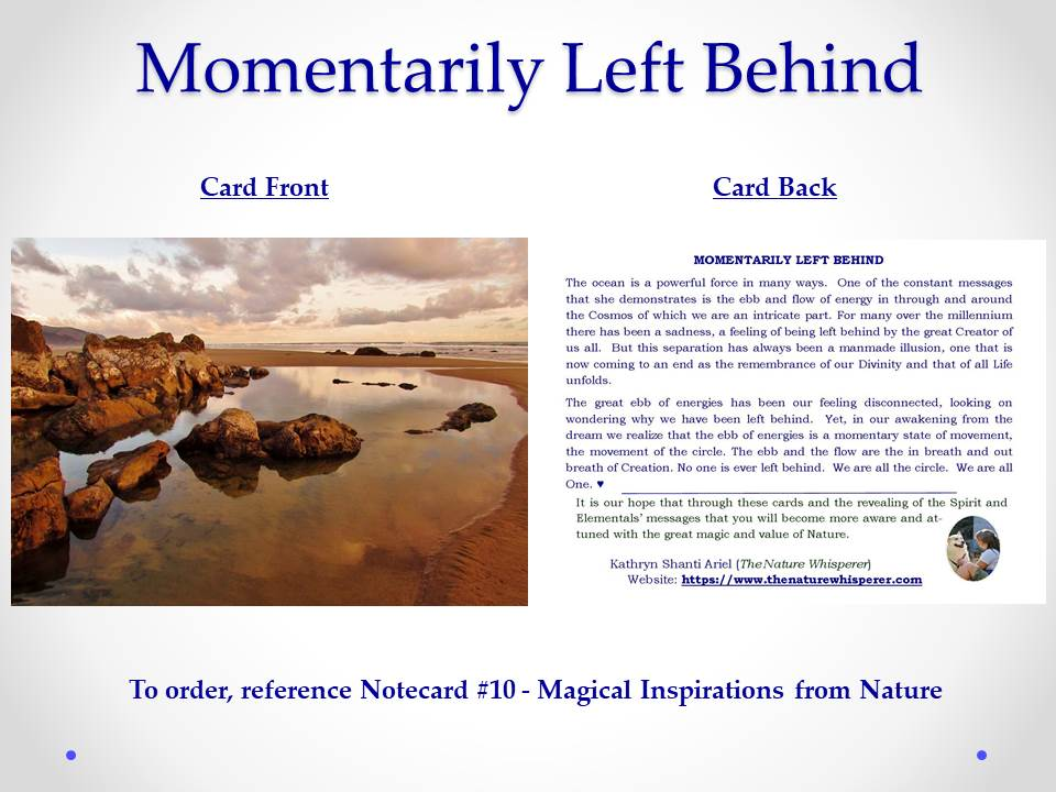 Momentarily Left Behind notecard