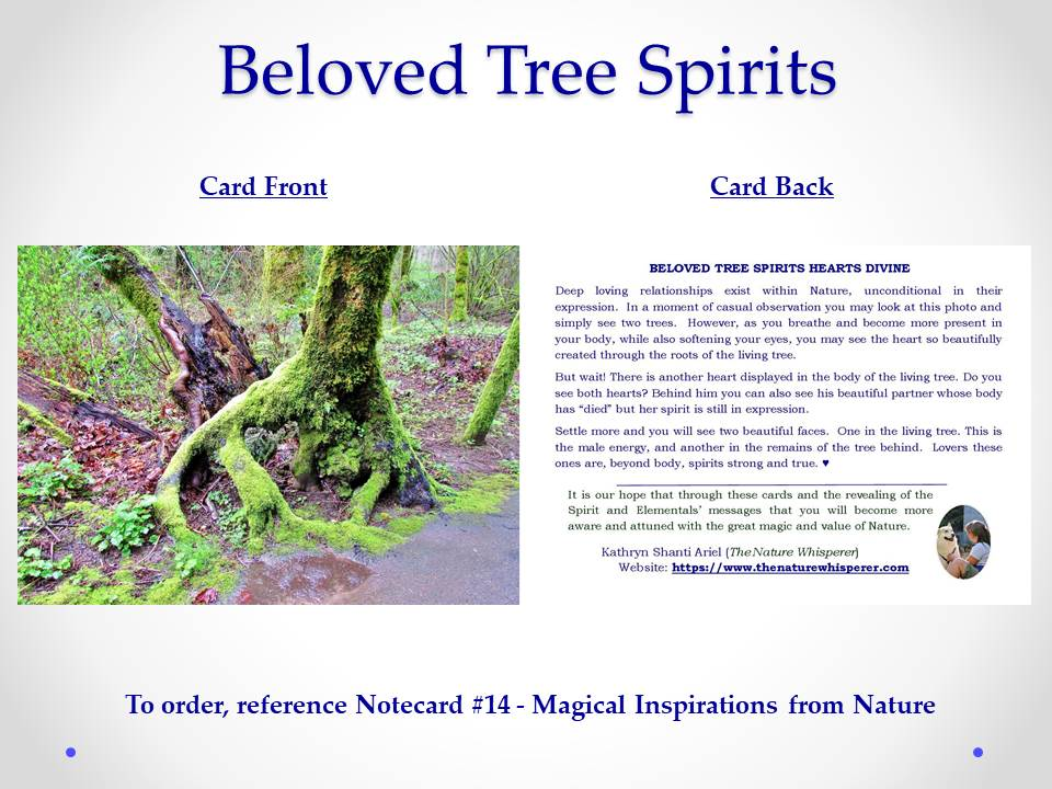 Beloved Tree Spirits notecard