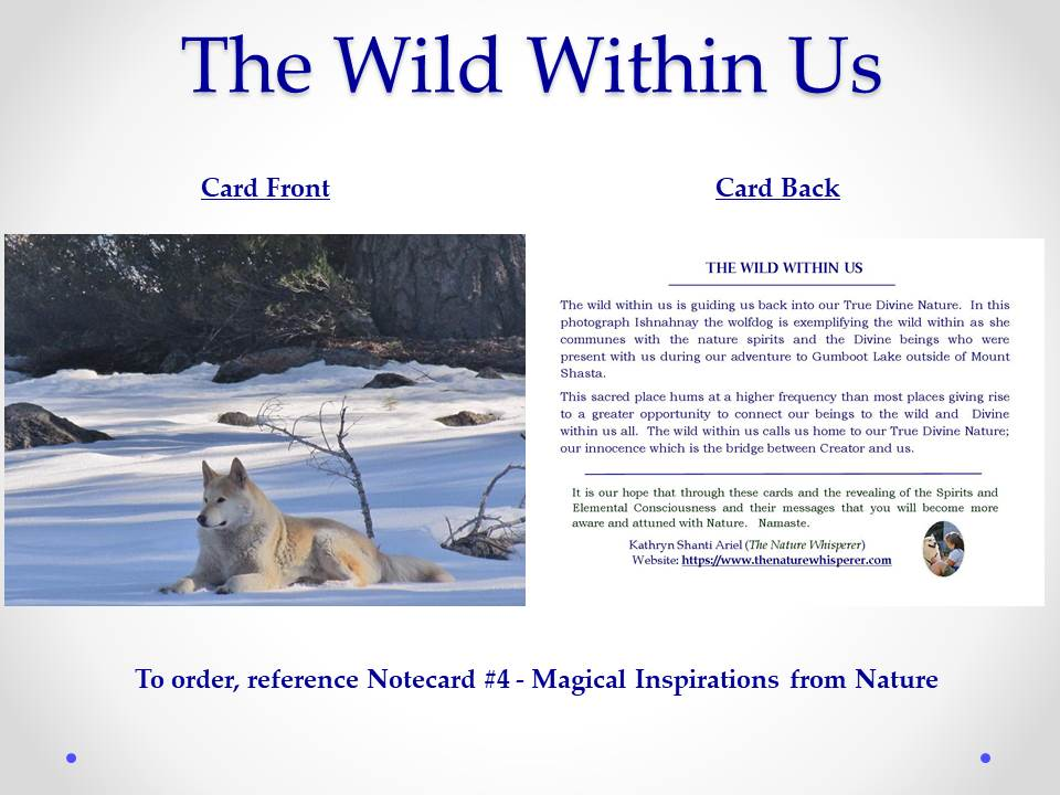 The Wild Within Us notecard