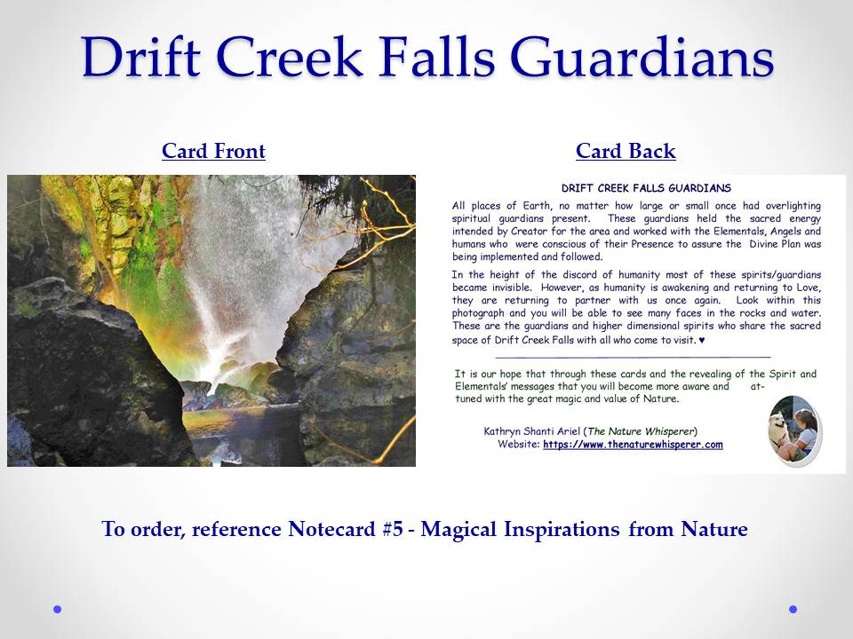Drift Creek Falls Guardians notecard