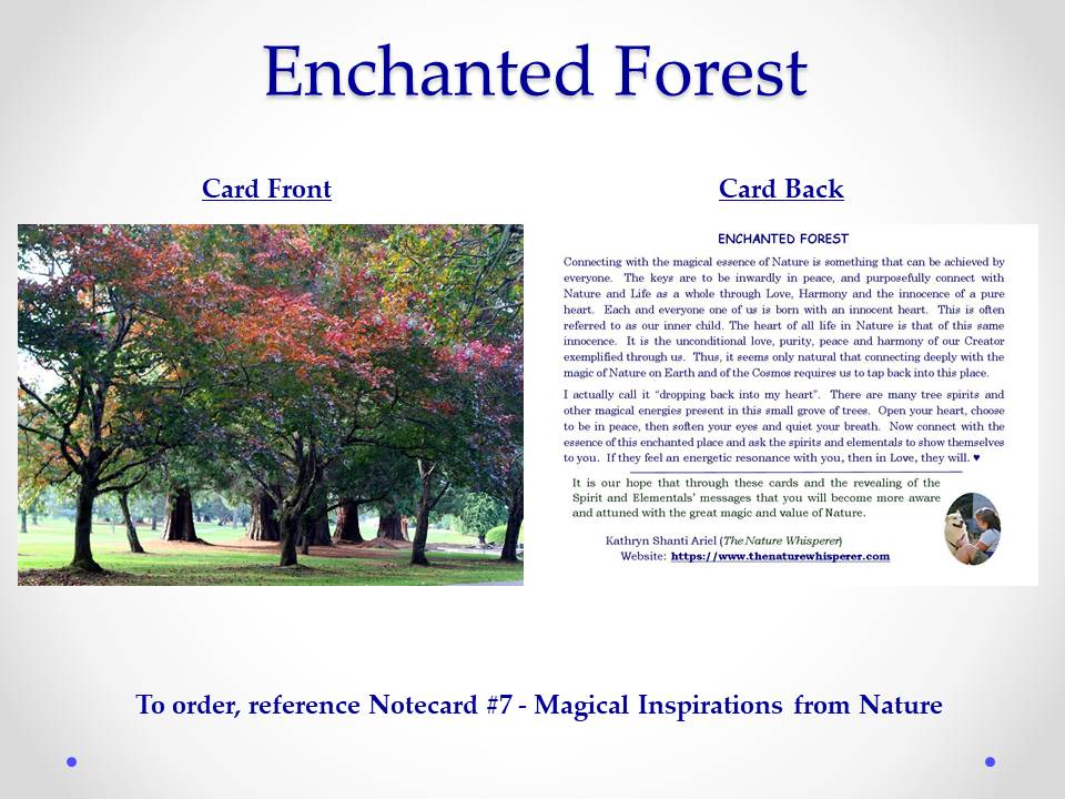 Enchanted Forest notecard