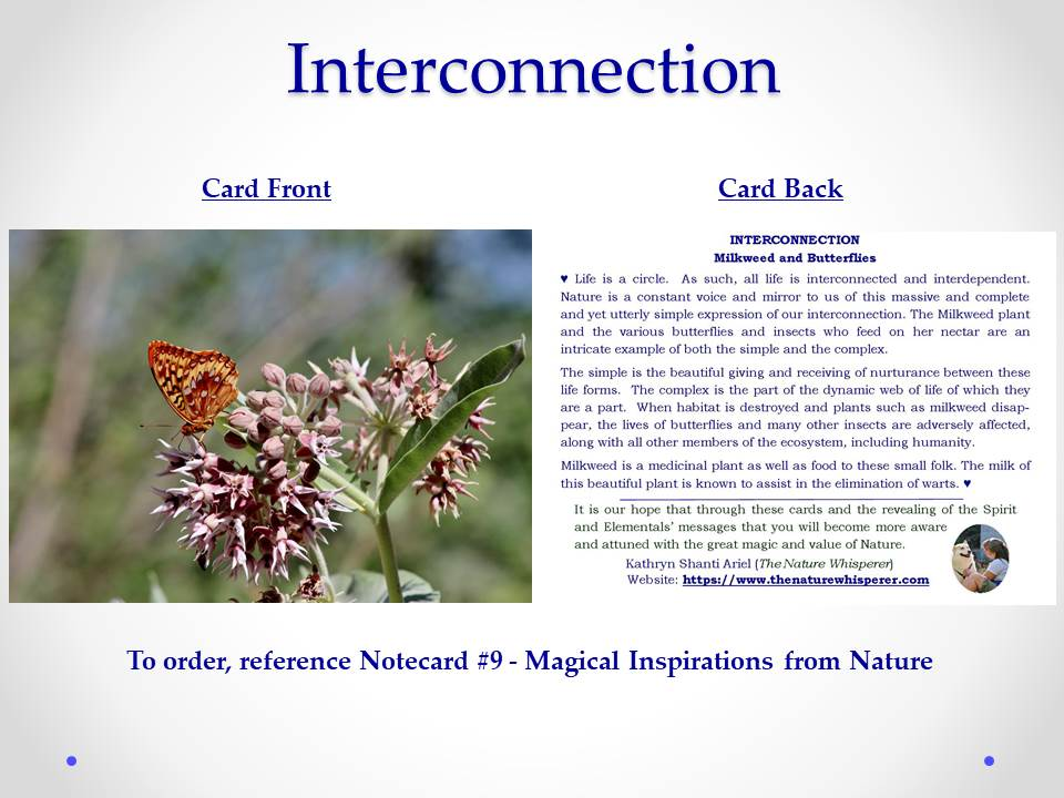 Interconnection notecard