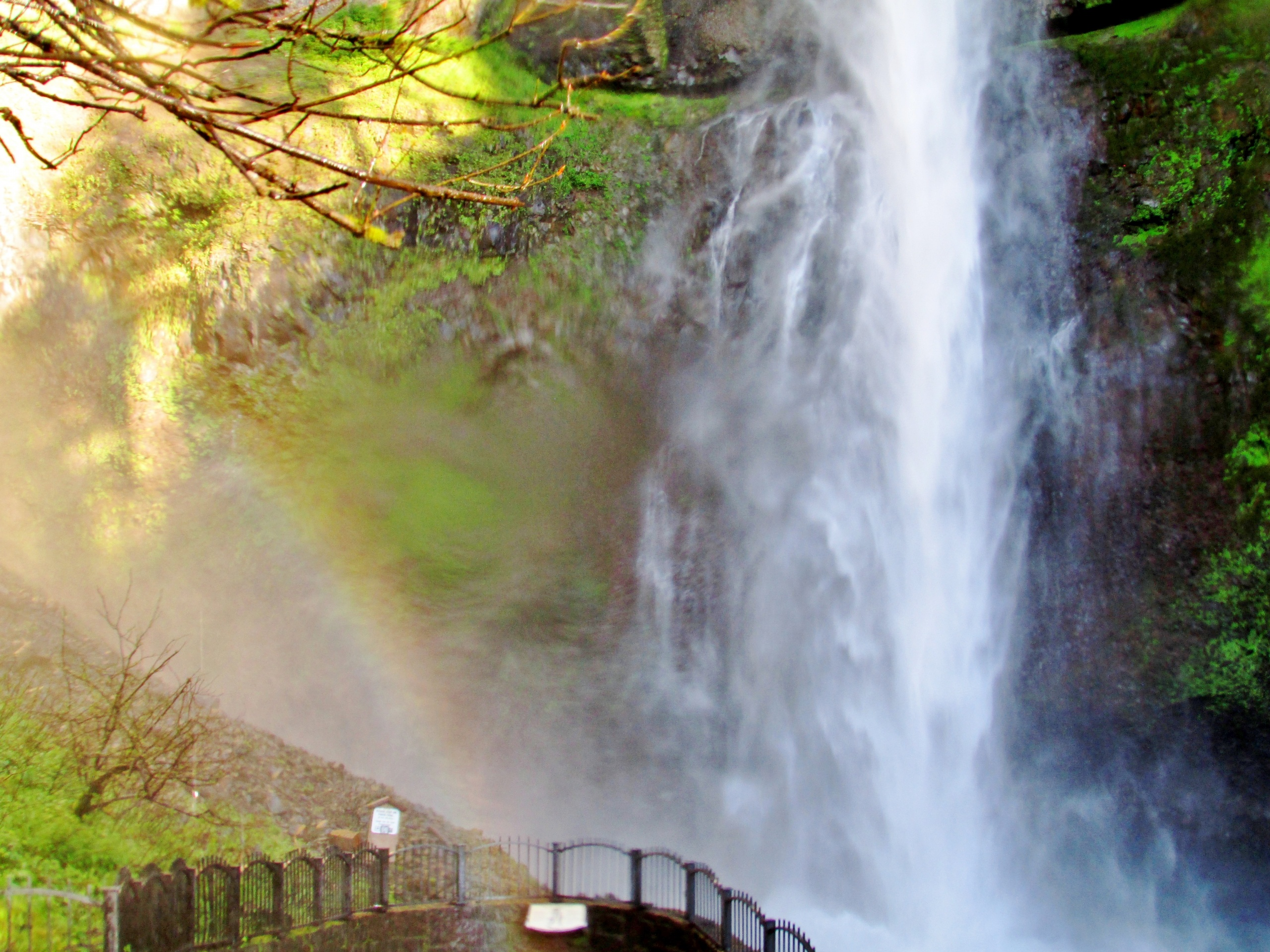 Rainbow at Multnomah falls