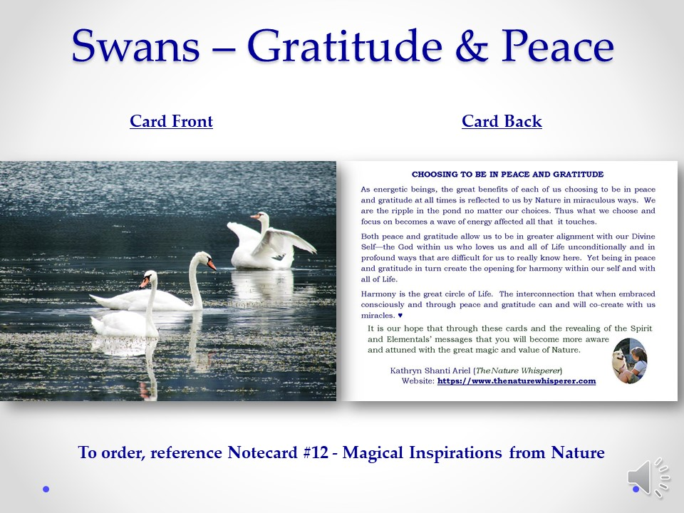 Gratitude and Peace notecard side by side