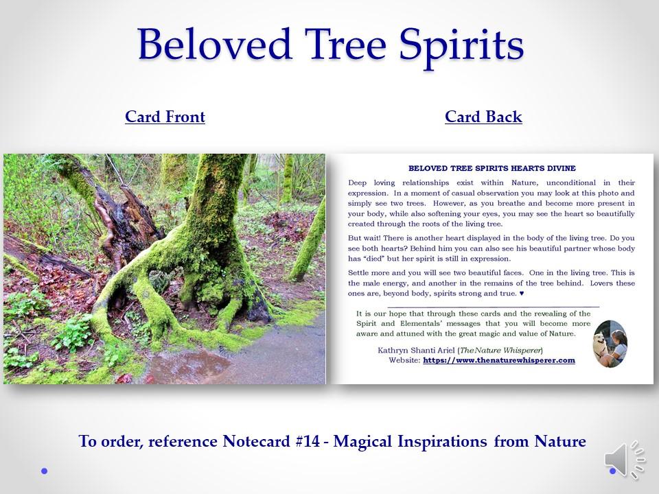 Beloved Tree Spirits notecard side by side