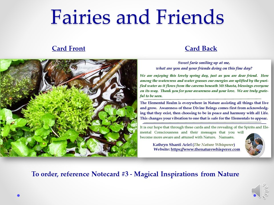 Fairie and Friends notecard side by side