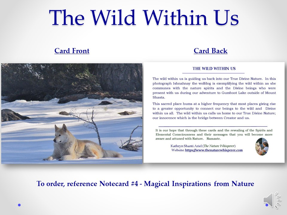 Wild Within notecard side by side