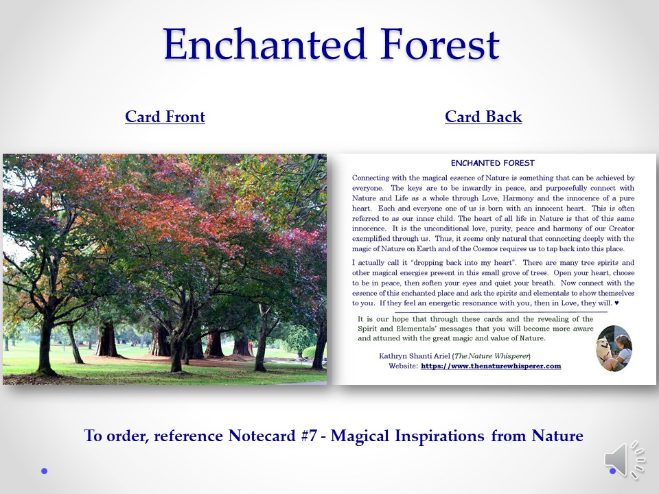 Enchanted Forest notecard side by side